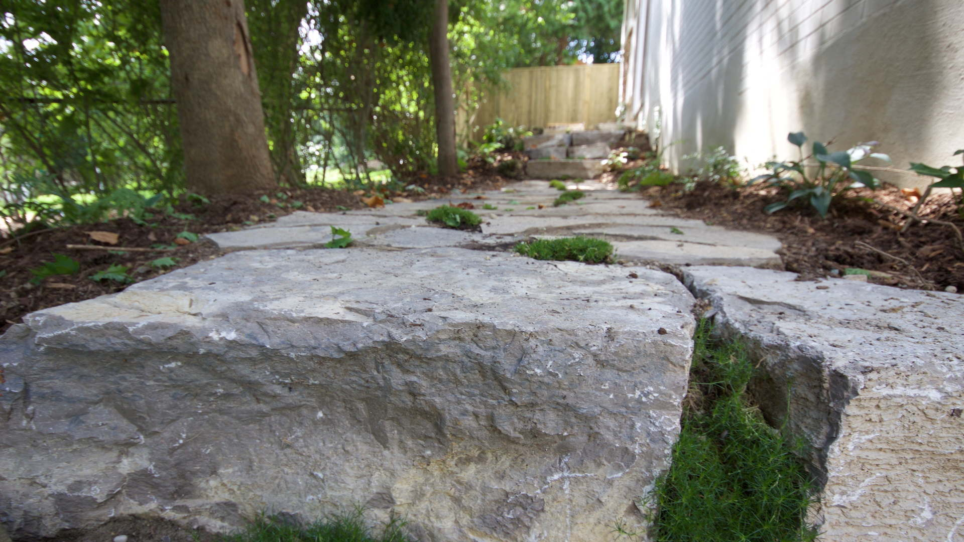 Close up picture of natural armour stone steps. Spaces in between the stones are filled with planted Irish moss. Traditional landscaping project in London Ontario.